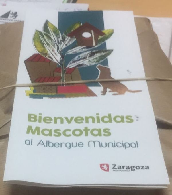 BIENVENIDAS LAS MASCOTAS AL ALBERGUE MUNICIPAL