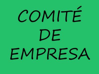 CONSTITUCIÓN DEL NUEVO COMITÉ DE EMPRESA